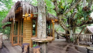 Airbnb Thailand